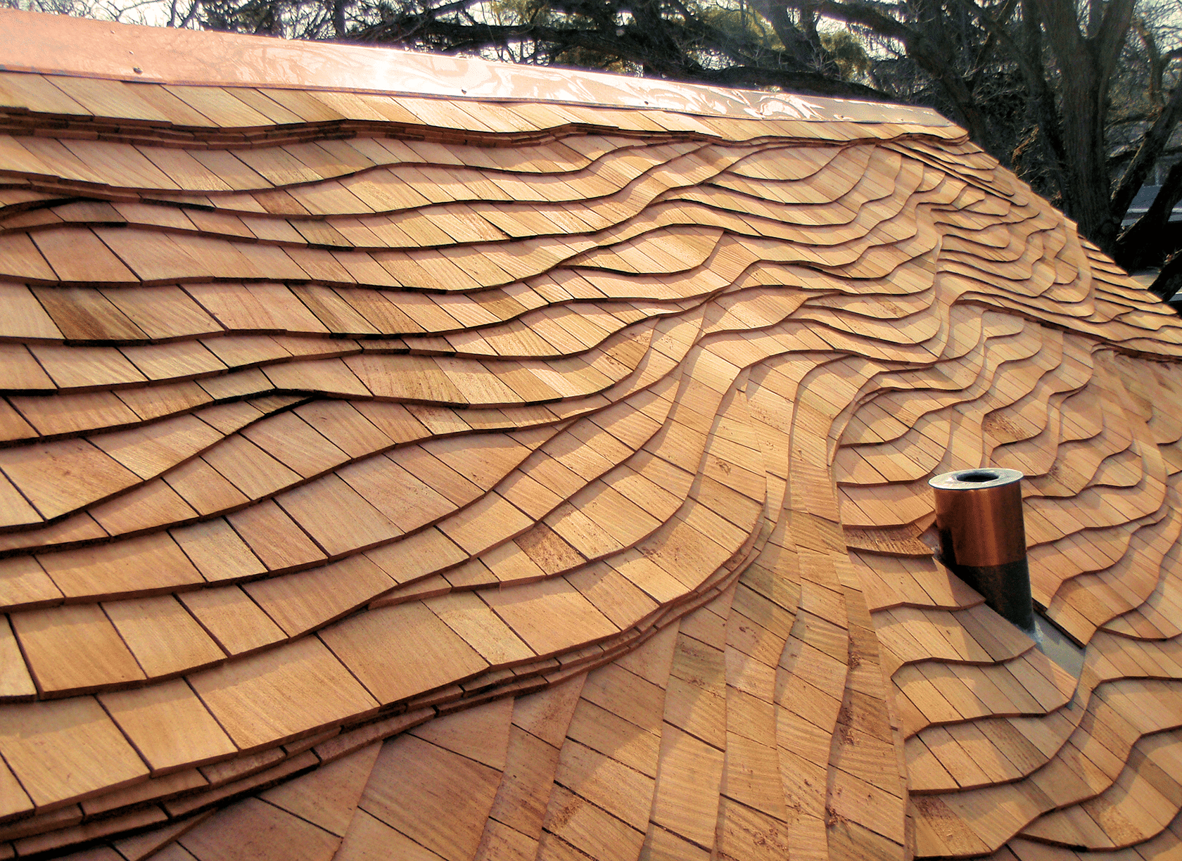 Roof 4